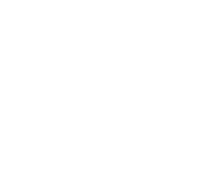 Detailed Drilling Programmes